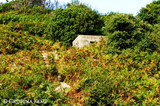CrimsonProse26bunker-cliff-1